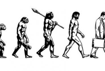 Antropología y Empresa: Los nativos corporativos