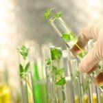 Bioeconomia y Conocimiento